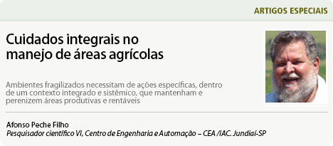 http://www.diadecampo.com.br/arquivos/image_bank/especiais/Peche_Fev17_ARTIGOS_201721132935.jpg