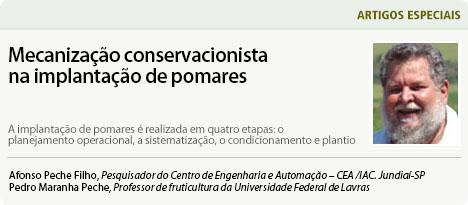 http://www.diadecampo.com.br/arquivos/image_bank/especiais/Peche_junho_17_ARTIGOS_2017626113437.jpg