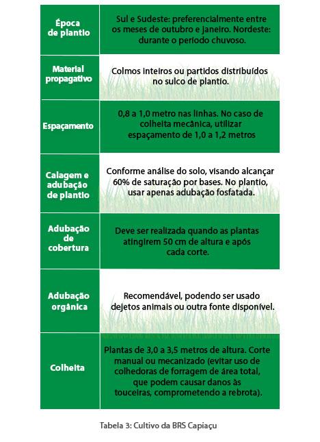 http://www.diadecampo.com.br/arquivos/image_bank/especiais/capim_elefante_tab3_DENTRO_201610139658.jpg
